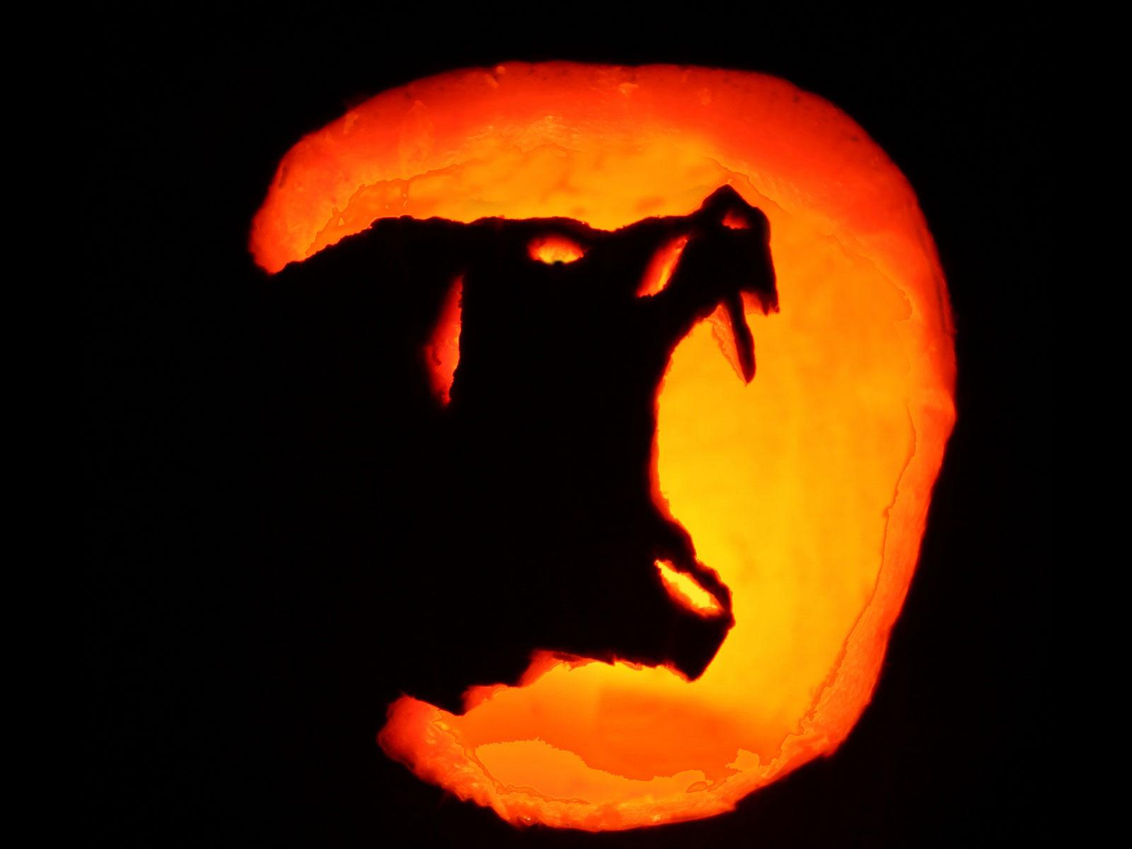 Обои Волк на Хеллоуин, картинки - Обои на рабочий стол ...
