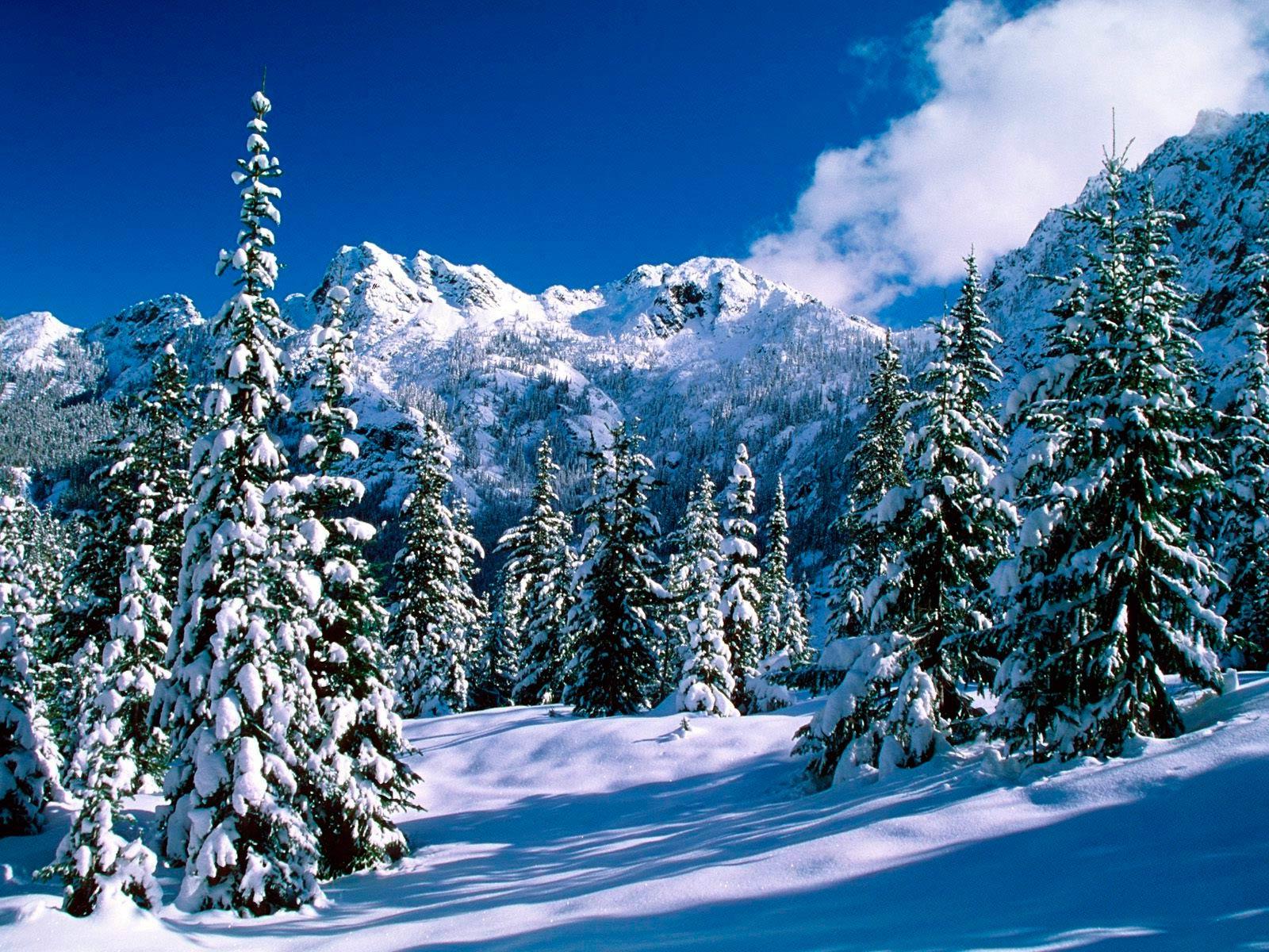 Обои зимние горы картинки фото обои
