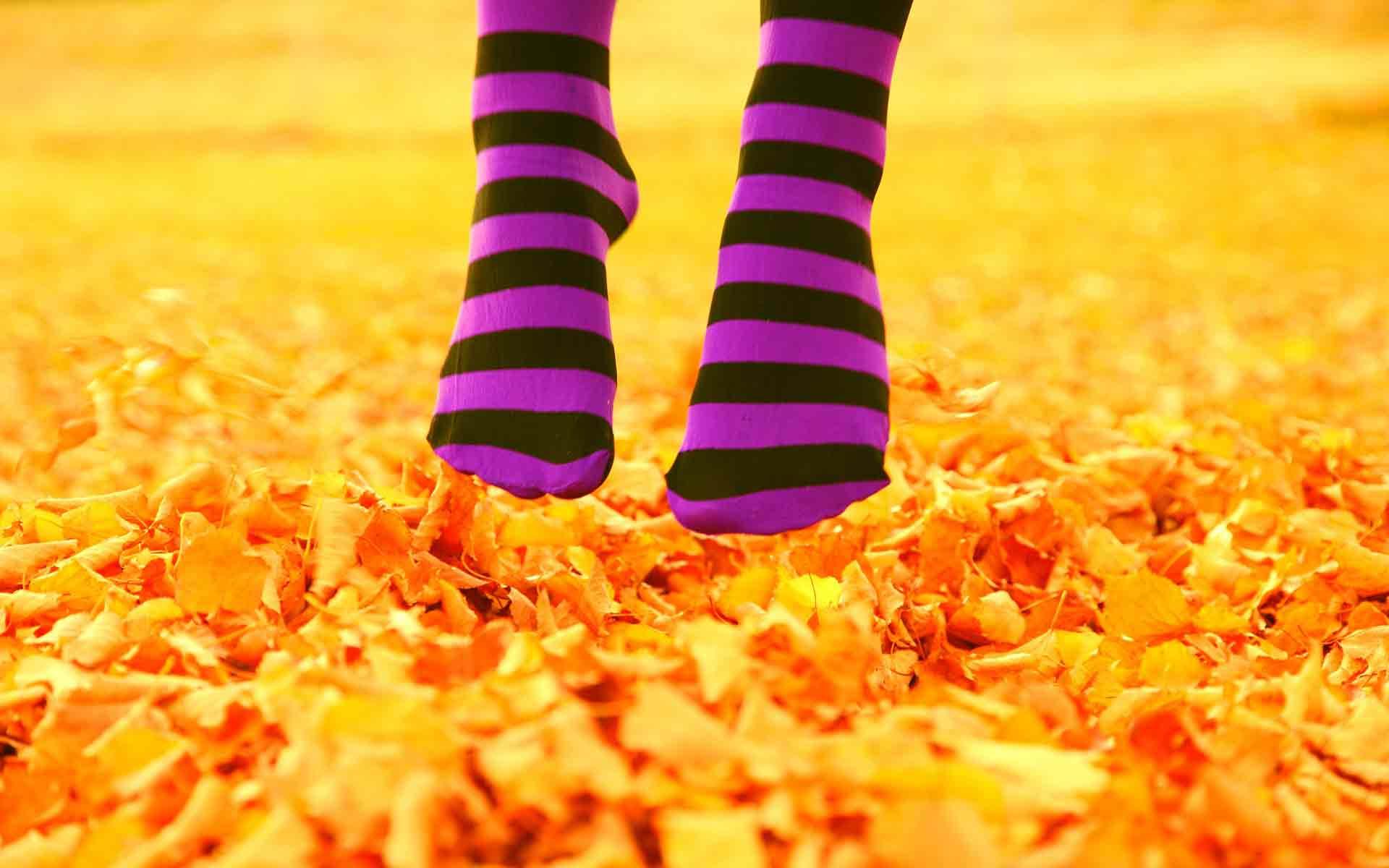 Обои ноги ноги над листвой