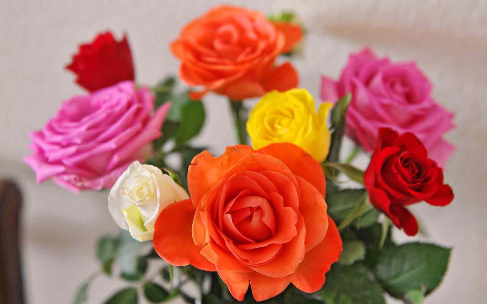 Букеты цветов фото красивые, качественные и оригинальные 43