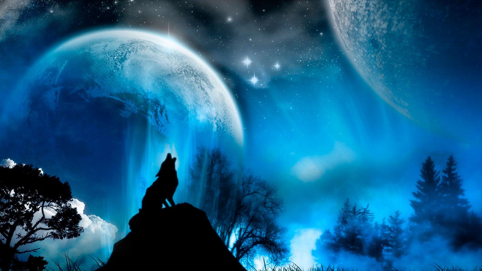 Обои Вой волка, картинки - Обои на рабочий стол Вой волка ...